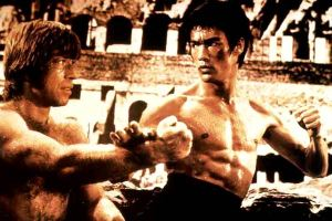 https://adrian10fajri.files.wordpress.com/2010/10/chuck_norris_bruce_lee_ponyrific.jpg?w=300