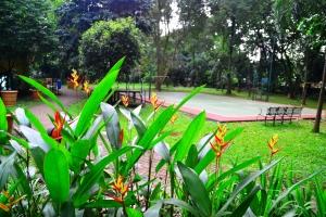 Taman asri semacam ini menjadi dambaan warga di tengah kebisingan kota, utamanya di Kota Jakarta. Pemerintah setempat harus berupaya memperbanyak teman asri seperti itu, demi kenyamanan warga kota.